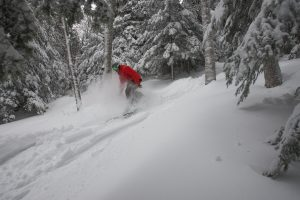 Snowboarder riding through unmarked trails at Sunday River on a powder day