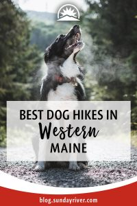 Top dog hikes in Maine near bethel and Sunday River