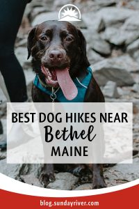 Best dog hiking trails in Western Maine